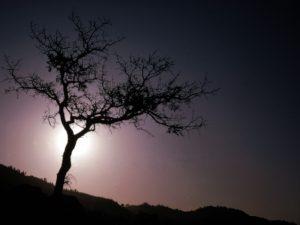 Alone Symbolism
